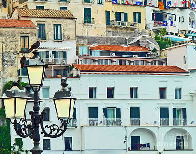 Poster featuring the photograph Amalfi Birds And Lamps by Cheryl Del Toro