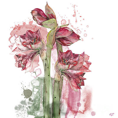 Poster featuring the painting Amaryllis Flowers - 3. - Elena Yakubovich by Elena Yakubovich