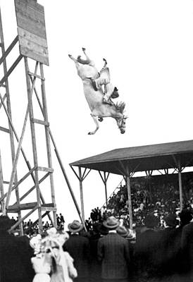 Amazing Horse Stunt Dive Poster by Underwood Archives