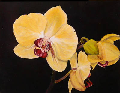 Poster featuring the painting Amber Orchids by Sandra Nardone