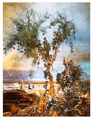 Poster featuring the photograph Amboy Shoe Tree by Steve Benefiel
