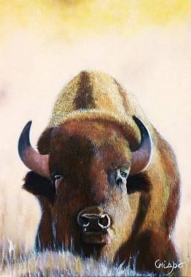 American Bison Poster by Jean Yves Crispo