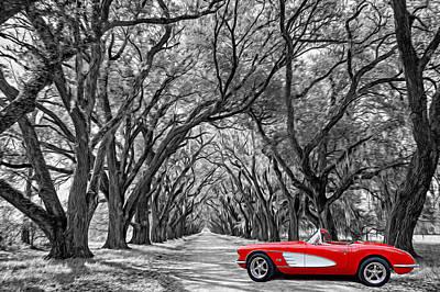 American Dream Drive Bw Poster by Steve Harrington