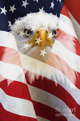 American Flag And Bald Eagle Montage Poster by Tim Gainey