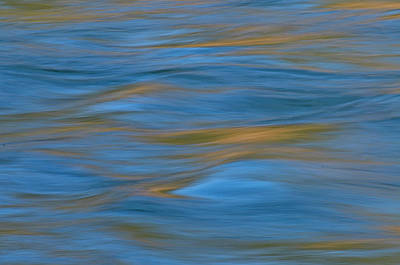 American River Abstract Poster