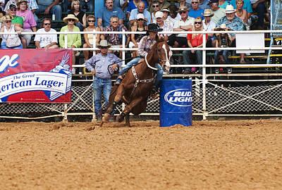 American Rodeo Female Barrel Racer White Blaze Chestnut Horse Iv Poster by Sally Rockefeller