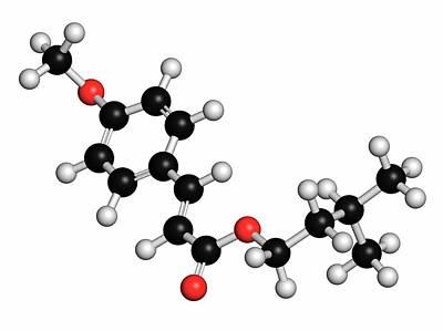Amiloxate Sunscreen Molecule Poster by Molekuul