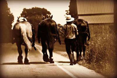 Amish Boy Farmer Poster
