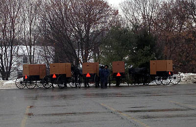 Amish Buggies Poster