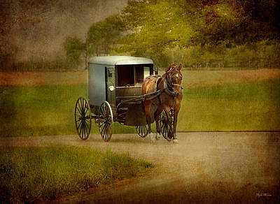 Poster featuring the photograph Amish Buggy Ride by Dyle   Warren