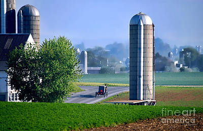 Amish Country  Poster by Dyle   Warren