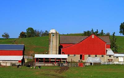 Amish Red Barn Poster