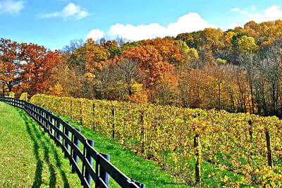 Amish Vinyard Two Poster by Frozen in Time Fine Art Photography