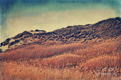Amrum Dunes Poster by Angela Doelling AD DESIGN Photo and PhotoArt