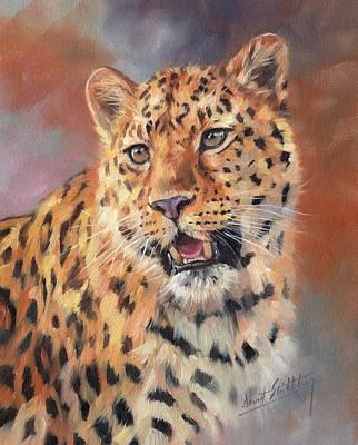 Amur Leopard Poster by David Stribbling