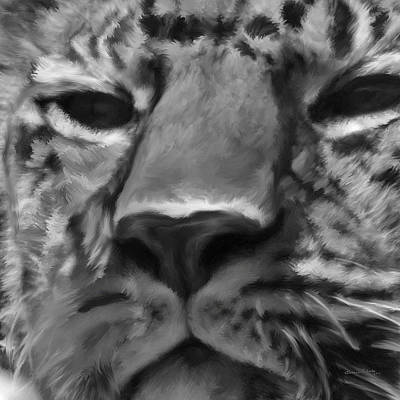 Amur Leopard Digital Freehand Bw Painting Poster