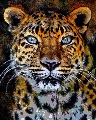 Amur Leopard Stare Poster