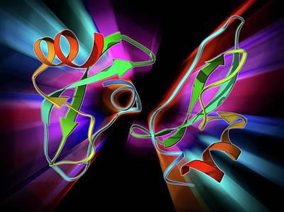 Amyloid Precursor Protein Molecule Poster by Laguna Design