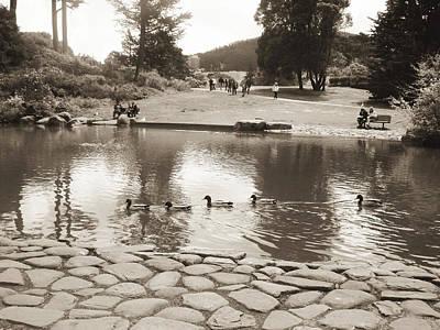 Poster featuring the photograph An Afternoon At Botanical Garden by Hiroko Sakai