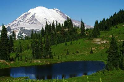 An Alpine Lake Foreground Mt Rainer Poster