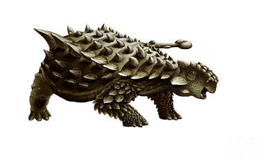 An Armored Saichania Ankylosaurid Poster