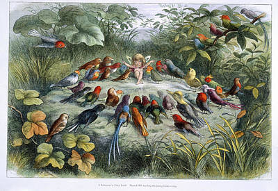 An Elf And Birds Poster by British Library