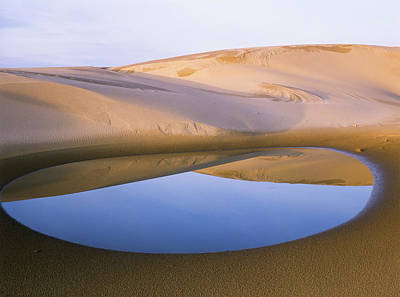An Ephemeral Pond Mirrors The Umpqua Poster by Robert L. Potts