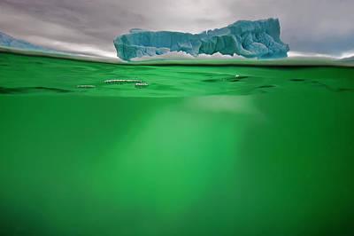 An Iceberg In Green Water Near Peterman Poster by David Doubilet