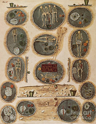 Ancient Celtic Cemetery Hallstatt Poster by Science Source