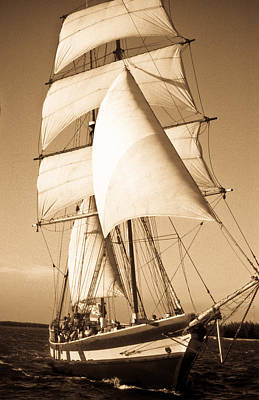 Ancient Pirate Ship In Sepia Poster by Douglas Barnett