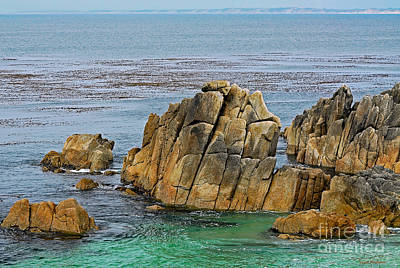 Ancient Rocks At Pacific Grove Poster