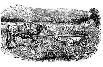 Ancient Roman Reaping Cart Poster