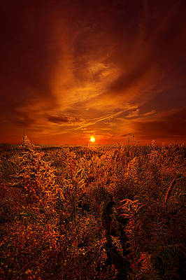 And The Sun Rose Yet Again Poster by Phil Koch