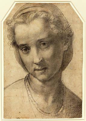 Andrea Del Sarto Italian, 1486 - 1530, Head Of A Woman Poster