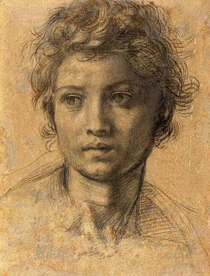 Andrea Del Sarto, Italian 1486-1530, Head Of Saint John Poster