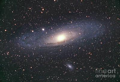 Andromeda Galaxy Poster by Chris Cook