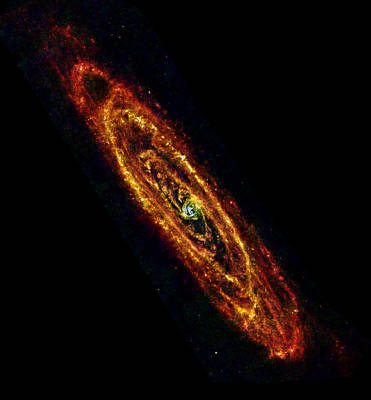 Andromeda Galaxy M31 Poster by Science Source