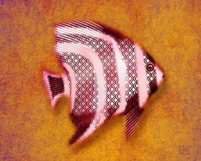 Angel Fish Poster by Matt Kirk