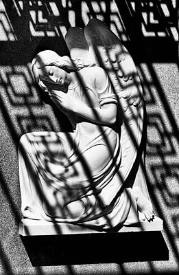 Angel In The Shadows 1 Poster by Swank Photography