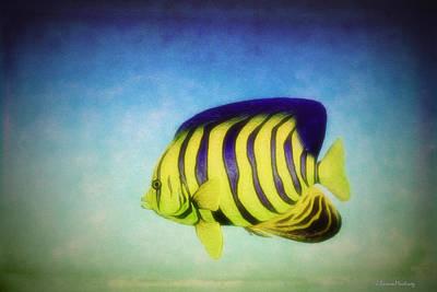 Angelfish Poster by Ramon Martinez
