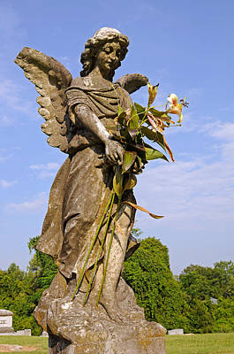 Poster featuring the photograph Angel's Bouquet by Andy Crawford