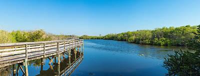 Anhinga Trail Boardwalk, Everglades Poster