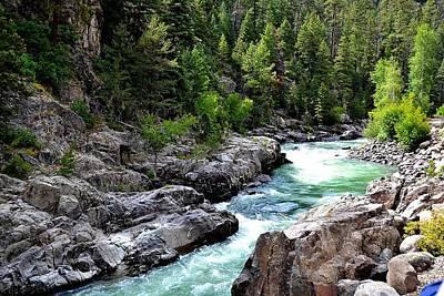 Animas River Poster