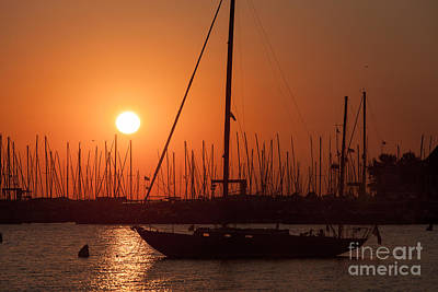 Annapolis Harbor Sunrise I Poster by Clarence Holmes