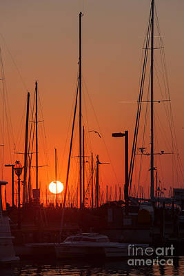 Annapolis Harbor Sunrise Iv Poster by Clarence Holmes