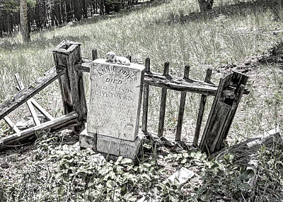 Annie Opie - Elkhorn Ghost Town - Montana Poster by Daniel Hagerman