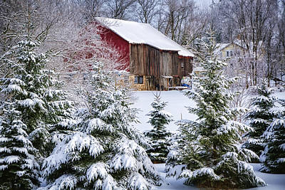 Another Wintry Barn Poster by Joan Carroll