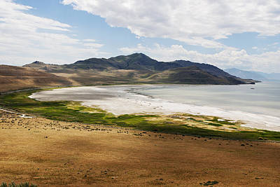 Poster featuring the photograph Antelope Island by Belinda Greb
