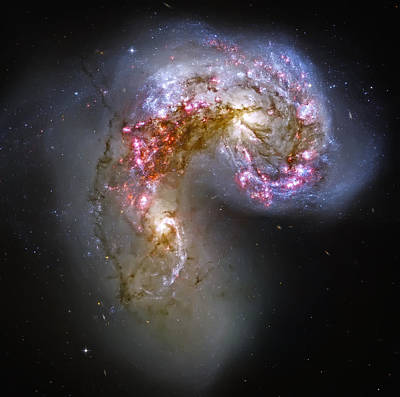Antennae Galaxies Collide 1 Poster by Jennifer Rondinelli Reilly - Fine Art Photography