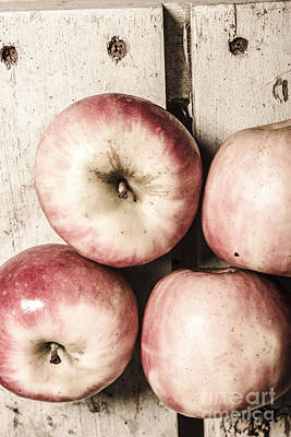 Antique Apples Poster by Jorgo Photography - Wall Art Gallery